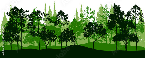 Tuinposter Groene vector landscape with pine trees