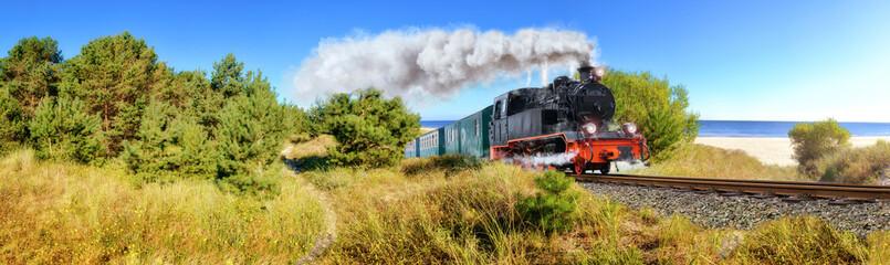 Fototapeta Historical German steam train in spring, Rugen, Germany