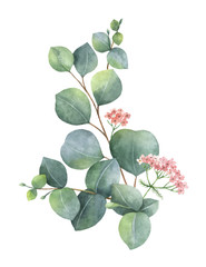 NaklejkaWatercolor vector bouquet with green eucalyptus leaves and branches.