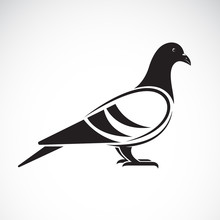 Vector Of A Pigeon Design On W...