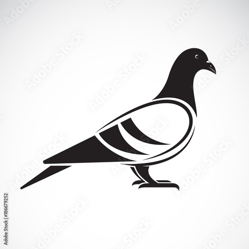 Vector of a pigeon design on white background. Bird. Animals. Vector illustration. Wall mural