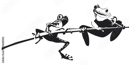 Photo deux grenouilles sur une branche en noir et blanc