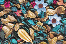 Background Of Beautiful And Colorful Ocean Scent Potpourri