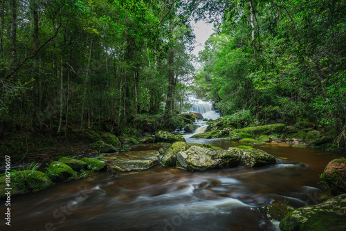 Fototapety, obrazy: Waterfall with green moss in the tropical rainforest landscape