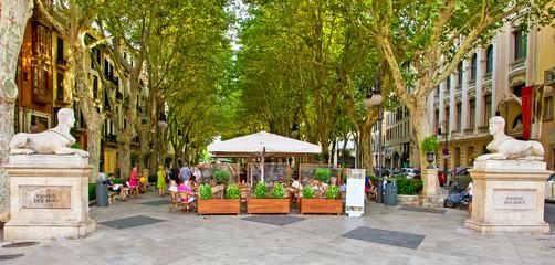 Passeig des born - Palma de Mallorca