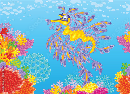 Tuinposter Onderzeeer A leafy sea dragon swimming in blue water over a colorful coral reef in a tropical sea, a vector illustration in cartoon style