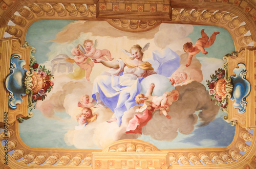 Fotografia, Obraz  Fresco in Stift Melk, Austria - Science