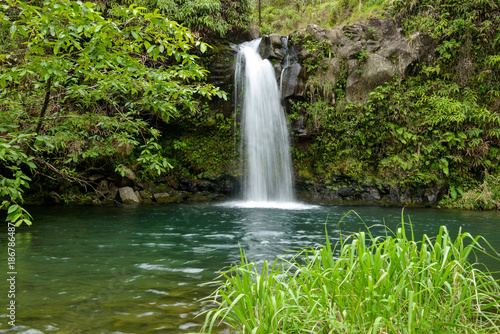 Canvas Print Tropical Waterfall - Lower Puaa Kaa Waterfall and a small crystal clear pond, inside of a dense tropical rain-forest, off the Road to Hana Highway, Maui, Hawaii, USA