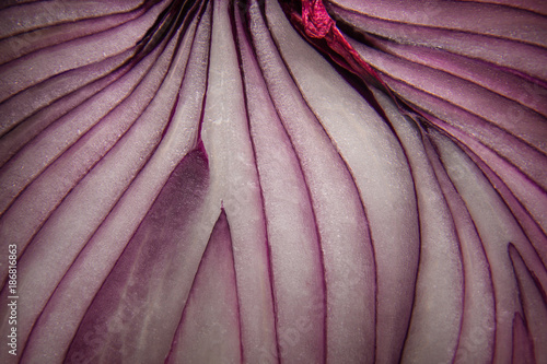Fotobehang Macrofotografie abstract macro close-up of red onion lines