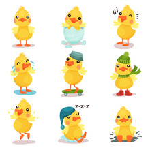 Cute Little Yellow Duck Chick Characters Set, Duckling In Different Poses And Situations Cartoon Vector Illustrations