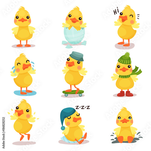 Cute little yellow duck chick characters set, duckling in different poses and si Canvas Print
