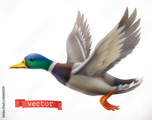 Duck. Hunting 3d vector icon Fotobehang