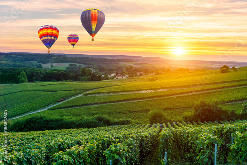Poster Montgolfière / Dirigeable Colorful hot air balloons flying over champagne Vineyards at sunset montagne de Reims, France