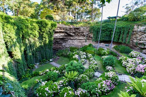 Therapy Garden © James Ser