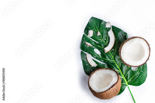 Coconut with palm branches