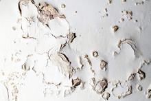 Blown Plaster. Damp Salt Damaged Wall Surface In Need Of Repair.