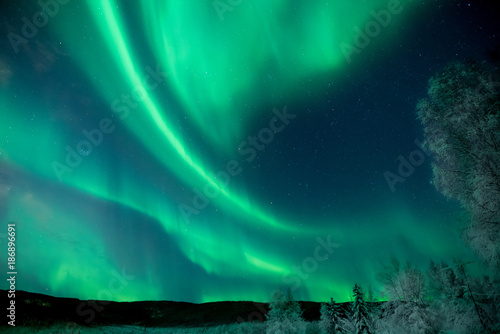 Photo  Dramatic green Aurora Borealis in Alaska night sky