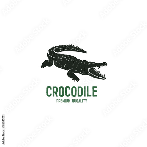 Photo crocodile logo template