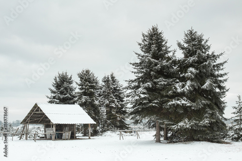 Germany, snow-covered landscape with shelter and firs