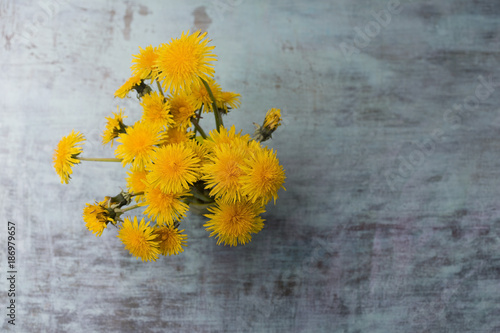 Bunch of dandelions