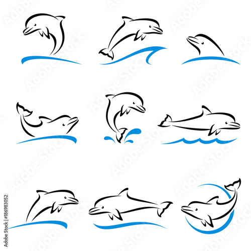 Naklejka premium Zestaw delfinów. Wektor