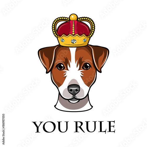 Fotografie, Obraz  Jack Russell Terrier in the crown dog vector illustration isolated in white background