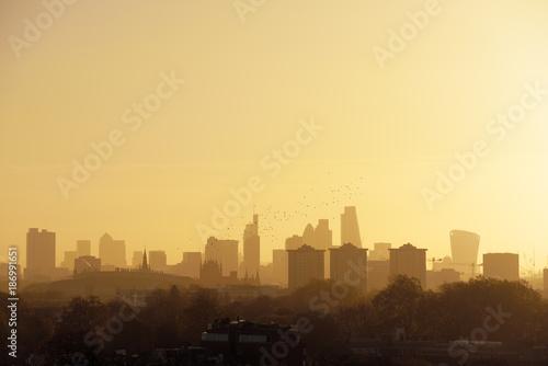 UK, London, flock of birds in front of skyline in morning light