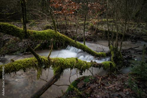 Wasserfall mit grünen Bäumen