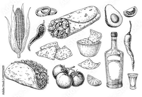 Fotografía  Mexican cuisines drawing. Traditional food and drink vector illu