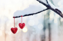 Red Hearts On Snowy Tree Branc...