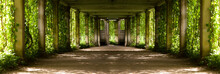 Panorama Of A Colonnade With O...