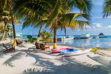 Palms And Beach At Caye Caulke...