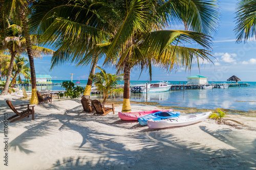 Palms and beach at Caye Caulker island, Belize Wallpaper Mural