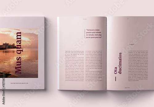 elegant magazine layout  buy this stock template and