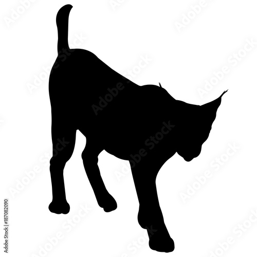 lynx silhouette vector graphics buy this stock vector and explore