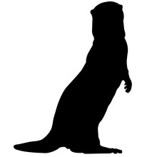 Otter Silhouette Vector Graphics