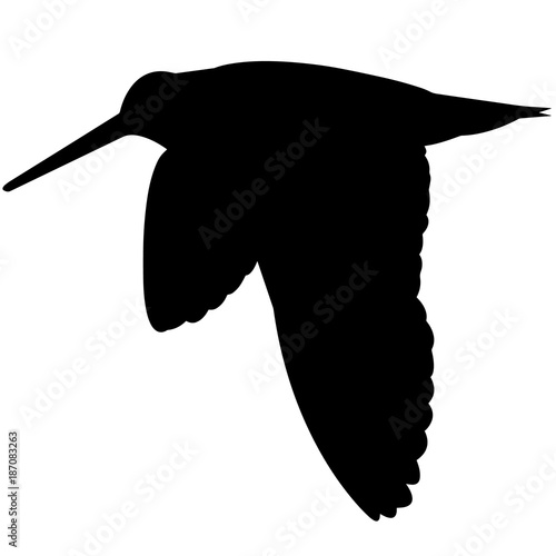 Snipe Silhouette Vector Graphics Canvas-taulu