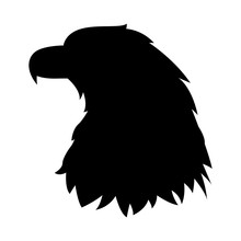 Eagle Head Vector Illustration...