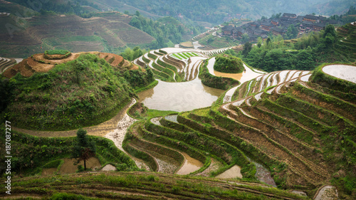 Canvas Prints Guilin Rice terraces. China.