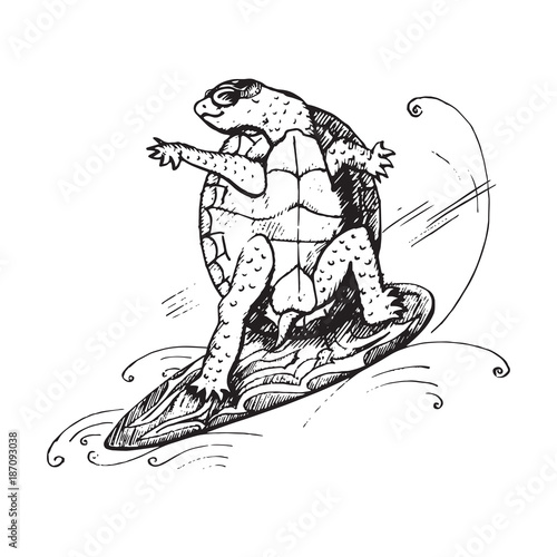 Fotografie, Obraz  Cartoon character of turtle in glasses on surfboard on wave, hand drawn doodle s