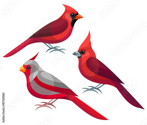 Photo  Stylized Birds - Northern, Vermilion and Desert Cardinals