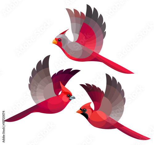 Photo  Stylized Birds - Desert, Vermilion and Northern Cardinals