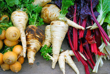 Colorful Fresh Winter Root Veg...