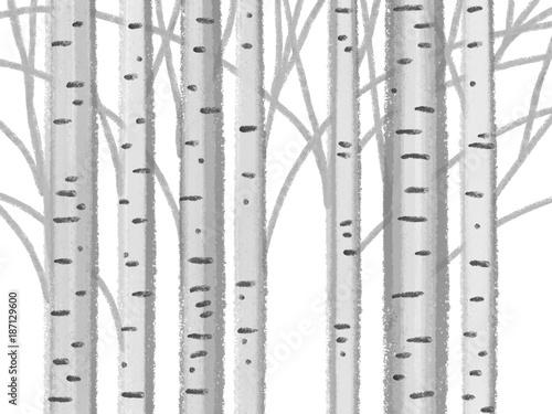 Obrazy styl skandynawski   pnie-drzew-styl-skandynawski