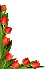 Red tulip flowers in corner arrangement