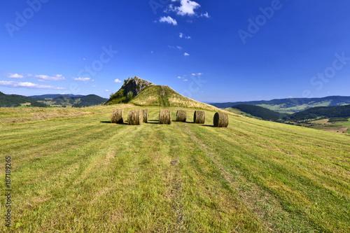 Foto op Canvas Pistache Countryside natural landscape.