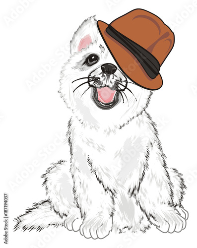 Poster Croquis dessinés à la main des animaux Husky, White Husky, Dog, Puppy, Friend, Pet, Illustration, White Puppy, Husky Puppy, hat