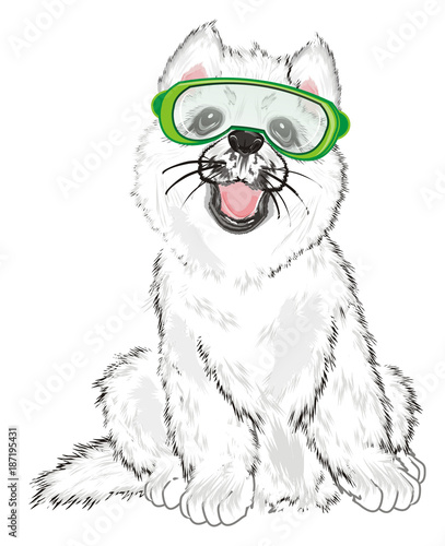 Poster Croquis dessinés à la main des animaux Husky, White Husky, Dog, Puppy, Friend, Pet, Illustration, White Dog, Furry Dog, White Puppy, Husky Puppy, year of dog, glasses, mask, snowboard