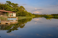 Damas Island Mangrove Area - C...