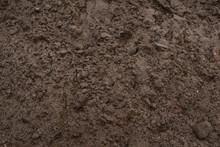 Sandy Loam - Soil Background, Texture